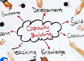 Organizational Capacity and Relevant Experience